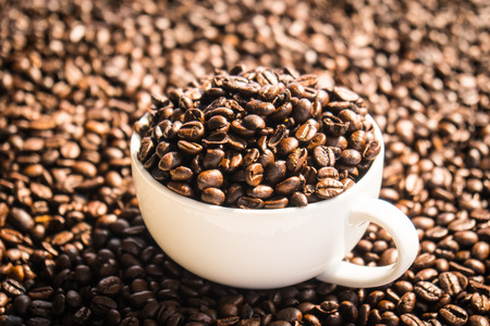 Brown coffee beans in white cup or mug