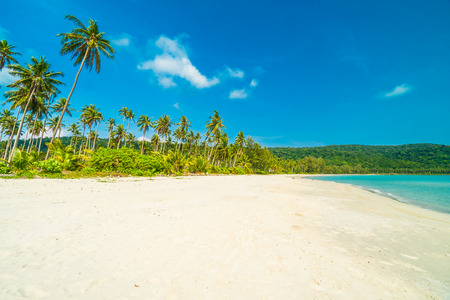 Beautiful nature tropical beach and sea with coconut palm tree on paradise island for travel vacation Stock Photo