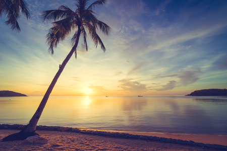 At sunset time on the tropical paradise island beach and sea with coconut palm tree for holiday and vacation Imagens