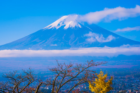 Beautiful landscape of mountain fuji around maple leaf tree with white cloud and blue sky in autumn season at Yamanashi Japan Standard-Bild - 125465983