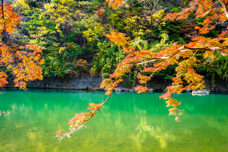 Beautiful Arashiyama river with maple leaf tree and boat around lake in Autumn season Kyoto Japan