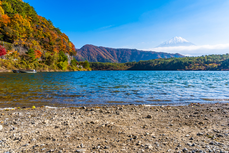 Beautiful landscape of mountain fuji with maple leaf tree around lake in autumn season Yamanashi Japan Imagens - 115468561