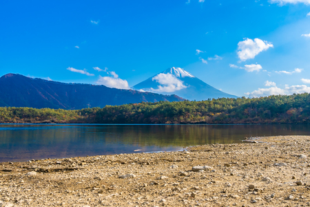 Beautiful landscape of mountain fuji with maple leaf tree around lake in Yamanashi Japan Imagens - 115468535