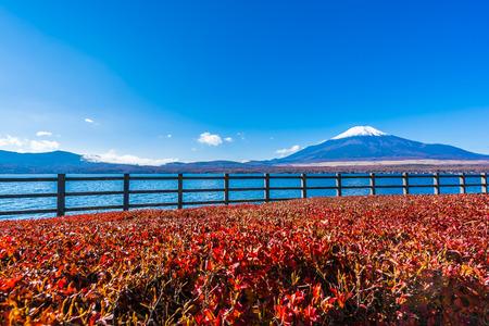 Beautiful landscape of mountain fuji around yamanakako lake Japan Imagens - 115468457