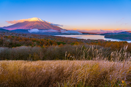 Beautiful landscape of fuji mountain in yamanakako or yamanaka lake in autumn season Japan Imagens - 115468458
