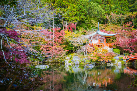 Beautiful Daigoji temple with colorful tree and leaf in autumn season Kyoto Japan Imagens