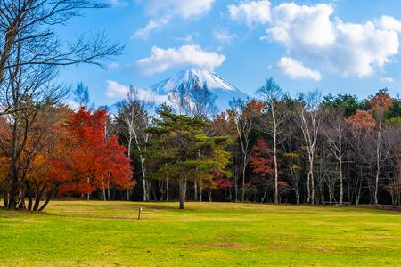 Beautiful landscape of mountain fuji with maple leaf tree around lake in autumn season Japan Imagens - 115468304
