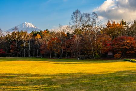 Beautiful landscape of mountain fuji with maple leaf tree around lake in autumn season Yamanashi Japan