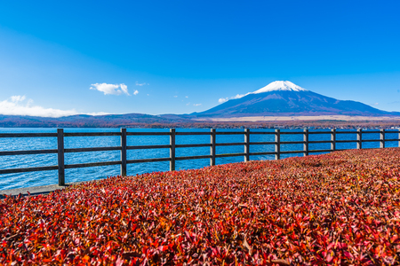 Beautiful landscape of mountain fuji around yamanakako lake Japan 스톡 콘텐츠 - 114962755