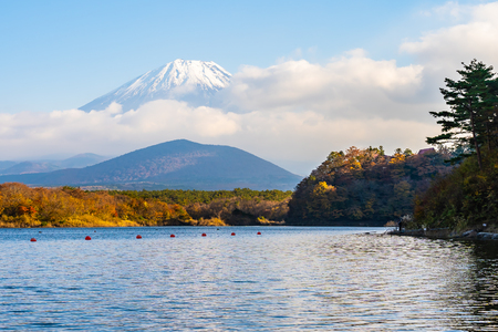 Beautiful landscape of mountain fuji with maple leaf tree around lake in autumn season Yamanashi Japan Standard-Bild - 126854070