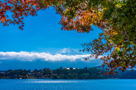 Hermoso paisaje de la montaña fuji con árbol de hoja de arce alrededor del lago en la temporada de otoño