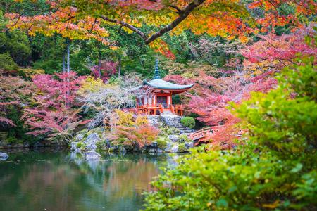 Beautiful Daigoji temple with colorful tree and leaf in autumn season Kyoto Japan