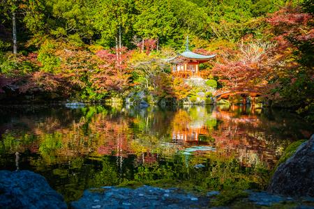 Beautiful Daigoji temple with colorful tree and leaf in autumn season Kyoto Japan 写真素材