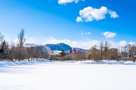 Beautiful landscape with tree in snow winter season for travel at Hokkaido Japan Imagens