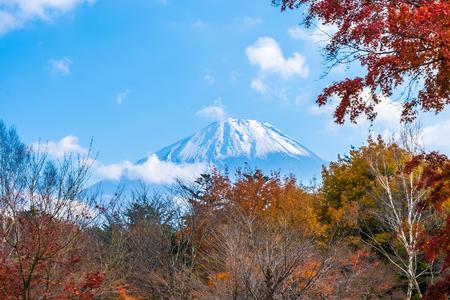 Beautiful landscape of mountain fuji with maple leaf tree around lake in autumn season Japan