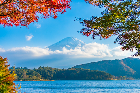 Beautiful landscape of mountain fuji with maple leaf tree around lake in Yamanashi Japan