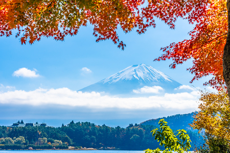 Beautiful landscape of mountain fuji with maple leaf tree around lake in autumn season Standard-Bild