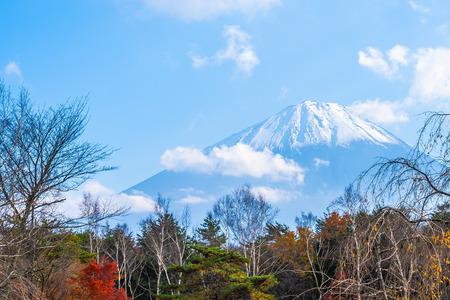 Beautiful landscape of mountain fuji with maple leaf tree around lake in autumn season Japan Standard-Bild - 120331354