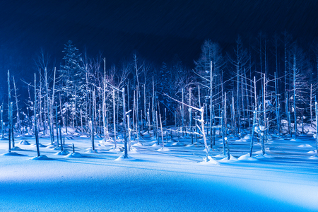 Beautiful outdoor landscape with blue pond river at night with light up in snow winter season at biei Hokkaido Japan