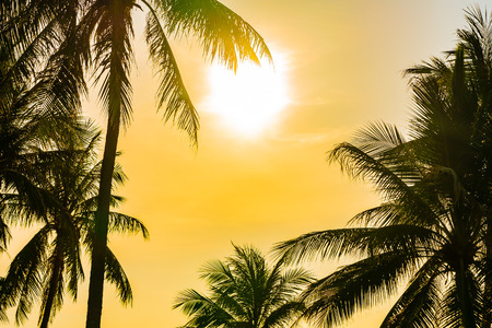 Beautiful outdoor nature landscape with sea ocean and coconut palm tree around swimming pool in hotel resort at sunrsie or sunset for leisure travel and vacation