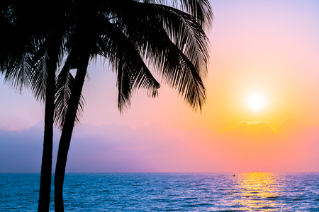 Beautiful Silhouette coconut palm tree on sky neary sea ocean beach at sunset or sunrise time for leisure travel and vacation concept 版權商用圖片