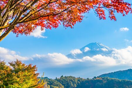 Beautiful landscape of mountain fuji with maple leaf tree around lake in Yamanashi Japan Banque d'images - 128369480
