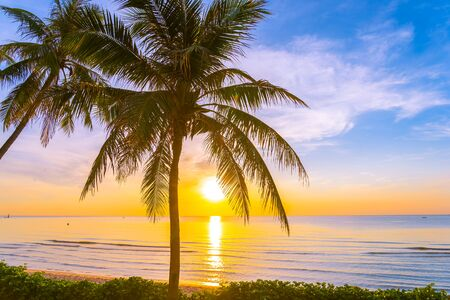 Beautiful outdoor tropical landscape of sea ocean beach with coconut palm tree at sunrise or sunset time for leisure relax in holiday vacation Stockfoto