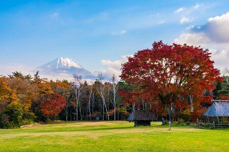 Beautiful landscape of mountain fuji with maple leaf tree around lake in autumn season Yamanashi Japan Reklamní fotografie - 129266791