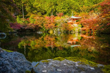 Beautiful Daigoji temple with colorful tree and leaf in autumn season Kyoto Japan Reklamní fotografie