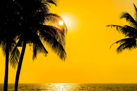 Beautiful Silhouette coconut palm tree on sky neary sea ocean beach at sunset or sunrise time for leisure travel and vacation concept Stok Fotoğraf