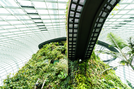 Beautiful architecture building flower dome garden and greenhouse forest landmark of singapore city for travel