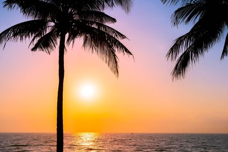 Beautiful Silhouette coconut palm tree on sky neary sea ocean beach at sunset or sunrise time for leisure travel and vacation concept Фото со стока