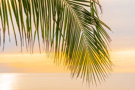 Beautiful sea ocean beach with palm tree at sunrise time for holiday vacation Фото со стока - 131349533