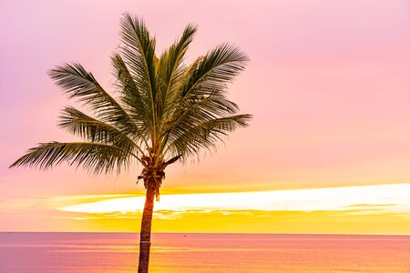Beautiful sea ocean beach with palm tree at sunrise time for holiday vacation