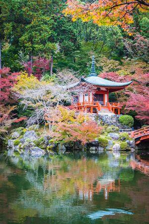 Beautiful Daigoji temple with colorful tree and leaf in autumn season Kyoto Japan 版權商用圖片