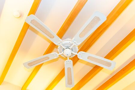 Electric ceiling fan decoration interior of room for house