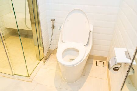 White toilet bowl seat decoration interior of bathroom