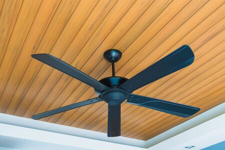 Black Electric ceiling fan decoration interior of room