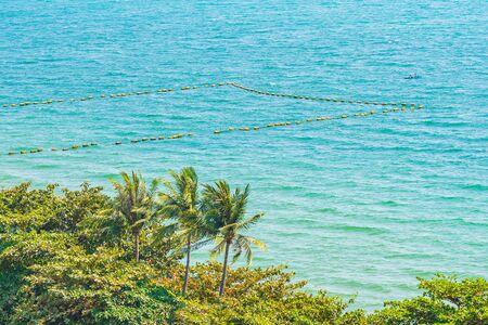 Belle nature tropicale de plage mer océan baie autour de cocotier pour des vacances de loisirs