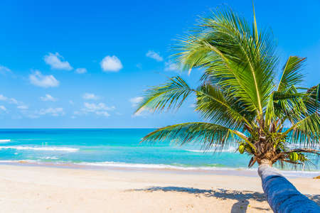 Beautiful tropical beach sea ocean with coconut palm tree around white cloud blue sky for vacation travel background