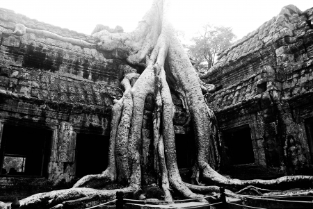 finds: Angkor Wat in Cambodia