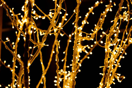 glod: the Christmas lights on the branch