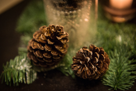 props: christmas Props decoration Props pine and candle