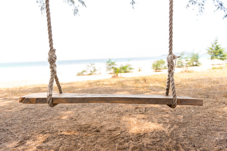 Vintage Swing hang from tree over beach photo
