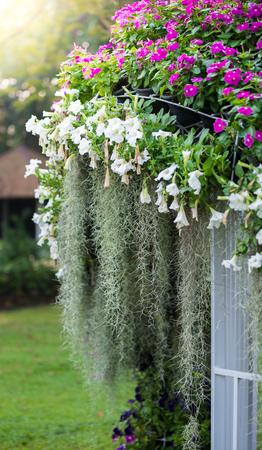 Decerate of garden