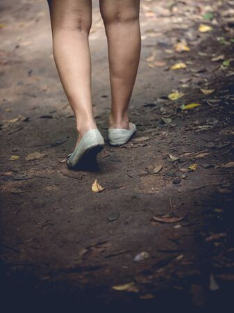 low section view: women during hiking excursion in woods, walking in a queue along a path. Low section view Stock Photo