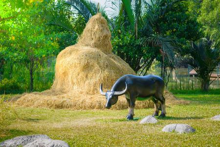 buffalo grass: dried grass straw and Buffalo statue