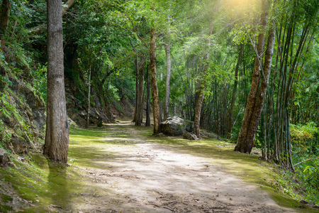Natural path at the Hellfire Pass Trail, Death Railway - The Second World War memorial in Kanchanaburi, Thailand.