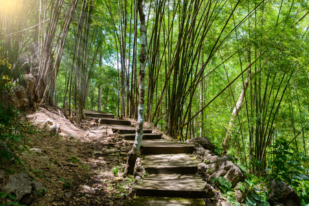 hellfire: Natural path at the Hellfire Pass Trail, Death Railway - The Second World War memorial in Kanchanaburi, Thailand.