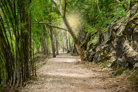 ancient pass: Natural path at the Hellfire Pass Trail, Death Railway - The Second World War memorial in Kanchanaburi, Thailand.